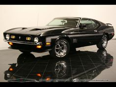 71 Mach 1. A really big Mustang, in fact the biggest, but very cool when decked out.