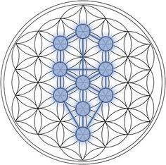 Heilige Geometrie und die Blume des Lebens: Die physikalische Grundlage der Schöpfung | Sein.de