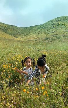 You belong among the wildflowers.