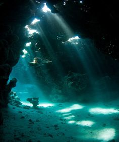 Sea-Life-in-Sea-Caves.jpg