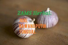 ZAMS Herbal Jual Bawang Putih Tunggal