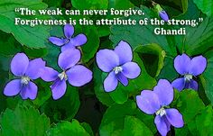 Learning to forgive may be one reason we are here.