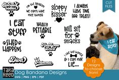 Dog Bandana Designs - Dog SVG and Cut Files for Crafters - Women Style Ideas Dog Quotes Funny, Funny Dogs, Treat Quotes, Dog Treat Jar, Bandana Design, Dog Bandana, Bandana Ideas, Dog Crafts, Pet Craft