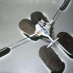 Superhydrophobic robot can jump on the surface of water (Wired UK)