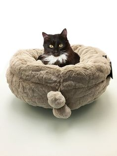 Precious Tails Beige Round Pet Bed Cuddler with Micro Mink Velour Exterior and Pom Poms 20' *** See this awesome image  : Pet dog bedding