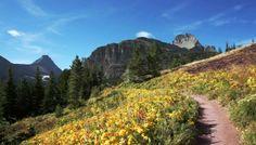 Many Glaciers Trail - Visit Glacier National Park