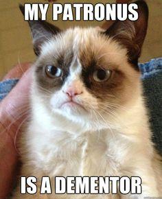 my patronus is a dementor