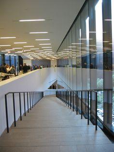 Resultado de imagen para Herzog & de Meuron de young museum,