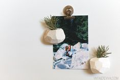 This DIY Magnetic Geo Planter makes a unique DIY stocking stuffer gift idea.