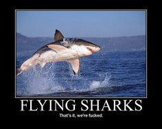 Flying Sharks That's It