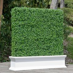 e-Joy ft. H x ft. W Artificial Boxwood Hedge Fence Panel Artificial Hedges, Artificial Boxwood, Artificial Turf, Artificial Plants, Artificial Green Wall, Bamboo Fence, Metal Fence, Aluminum Fence, Fence Stain