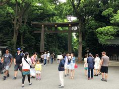 The Meiji Shrine is an essential stop for anyone visiting Japan. The accessibility is a bit of a mixed bag: great ramps and toilet, but a long gravel path. Meiji Shrine, Visit Japan, Entrance, Entryway, Door Entry