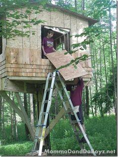 Treehouse DIY