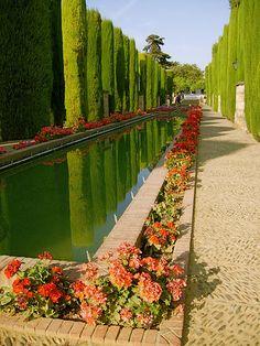 Gardens in the Alcazar in Cordoba in Spain via flickr