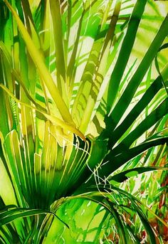 """Palm 1"" by Carol Carter"