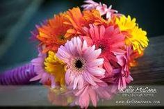 Google Image Result for http://manolobrides.com/images/2009/05/gerbera-daisies-bouquet-2.jpg
