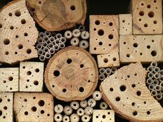 Bee houses for solitary bees.