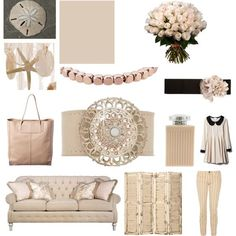 Sand Dollar  Pantone Color of the Year 2006: