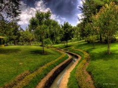 Ooty Botanical Park.