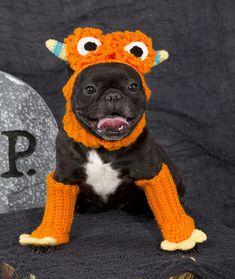 Ferocious Pooch Costume | AllFreeCrochet.com
