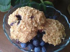 Blueberry Oatmeal Softies Teenage Cakeland