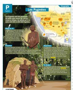 Fiche exposés : Les Pygmées