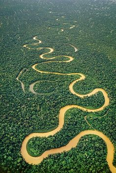 Meandering river at Tambopata National Reserve, Peru - photo from robertharding blog (article by Tom Walmsley)