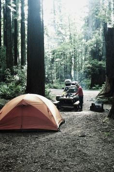 Camping. Need some good 'ol camping back in my life...