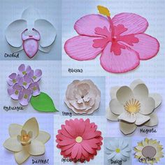 svg free files | 3D Flowers SVG Collection