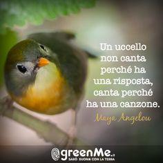 Un uccello non canta perché ha delle risposte, ma perché ha una canzone. Maya Angelou www.greenme.it
