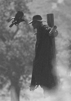 (3) Crows & Ravens.  From Jeepers Creepers
