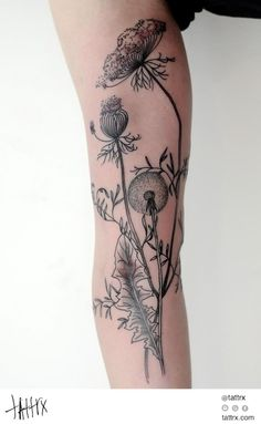 Victor J Webster - Auckland New Zealand tattoos   tattrx