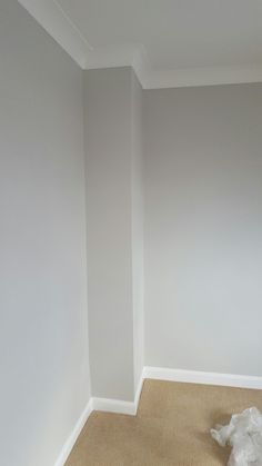 Hallway colour - dulux pebble shore