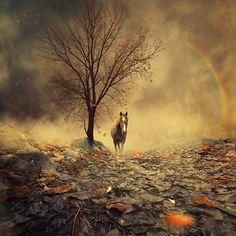 Sweet november ending by Caras Ionut, via 500px