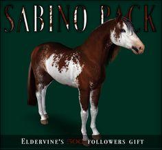 18 sabino markings - by Eldervine Fields