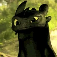 Toothless GIFs - HTTYD