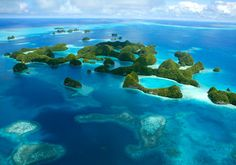 Palau...jelly fish lake, swim with dolphins, the milky way, kayaking, snorkeling, diving....paradise =)