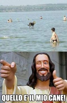 Il Cane di Gesù !