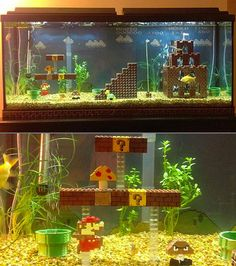 a super mario fish tank. Linus would love it lol Freshwater Aquarium, Aquarium Fish, Aquariums, Fish Tank Themes, Cool Fish Tanks, Game Room Design, Super Mario Bros, Betta Fish, Aquaponics