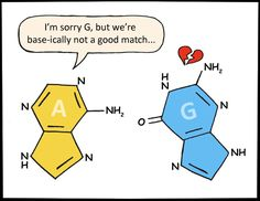 Even DNA has trouble finding the perfect match.