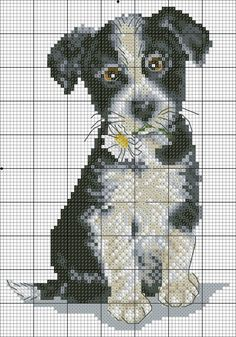 Free Cross Stitch Charts, Cross Stitch Love, Cross Stitch Borders, Cross Stitch Alphabet, Cross Stitch Animals, Cross Stitch Designs, Cross Stitching, Cross Stitch Embroidery, Cross Stitch Patterns