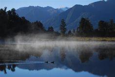 New Zealand Photographic Print Lake Matheson Duck by NewCreatioNZ, $29.00