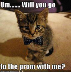 awwwwww! yes i will
