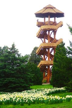 Tree Tower at the Cox Arboretum in Dayton Ohio