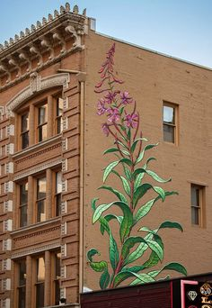 Fireweed by Mona Caron at The Postal Building, Portland