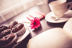 Free Image: Sweet Morning | Download more on picjumbo.com!