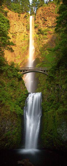 Multnomah Falls at sunset - Multnomah Falls, a roaring, awe-inspiring cascade of icy water. These falls are close to Portland Oregon. Multnomah Falls, Summer Sunset, Portland Oregon, Water Features, The Great Outdoors, Sunrise, Waterfall, World, Nature