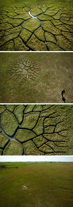 World Tree: A Branching River Etched into the Ground by Krisztián Balogh