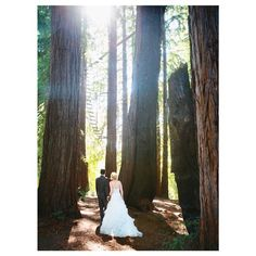 Sending out this wedding this week. Christine and Sam's wedding in the Redwoods was awesome. Not to mention how great it was to work with @ampersandcinema too who did the video for it.