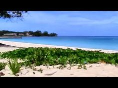 A very comprehensive look at the wonderful town and area of Negril, Jamaica View photos and rates for Negril, Jamaica resorts, tours, and airport transfers h. Jamaica Resorts, Negril Jamaica, Jamaican Music, Home And Away, Hotels, Tours, Beach, Places, Water